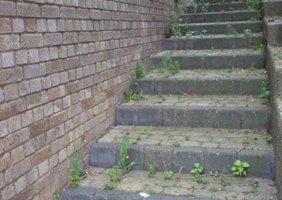 Paved Steps